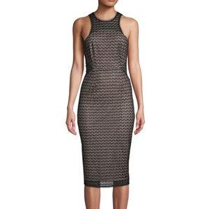 NWT Nina Lace Knee-Length Sheath Dress